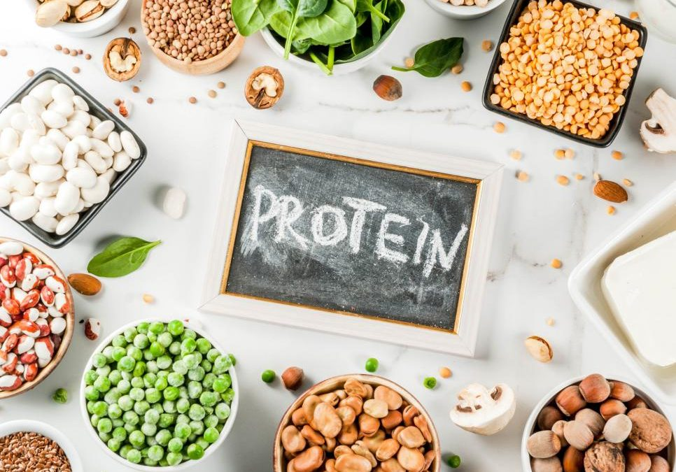 Better Know a Macro – Protein