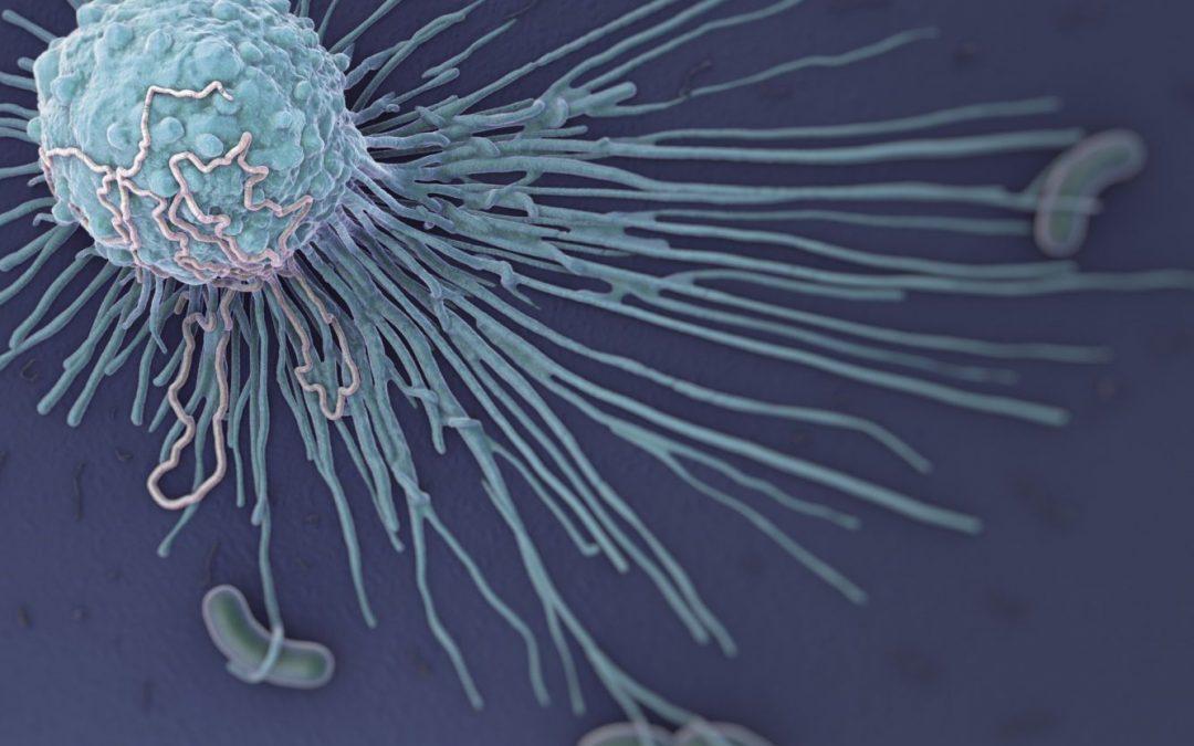 Strengthening Immunity